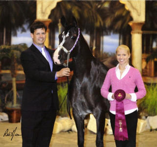 Gameela FA winning 2009 Egyptian Event Top Ten 6-7 World Class Mares